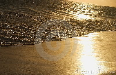Waves On Shoreline