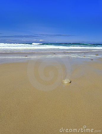 Waves single stone on sandy beach with copy space