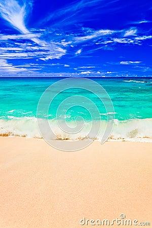 Waves on tropical beach