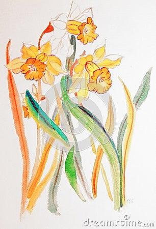 Waving daffodils