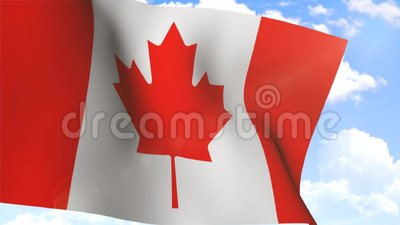 Waving Flag of Canada stock video