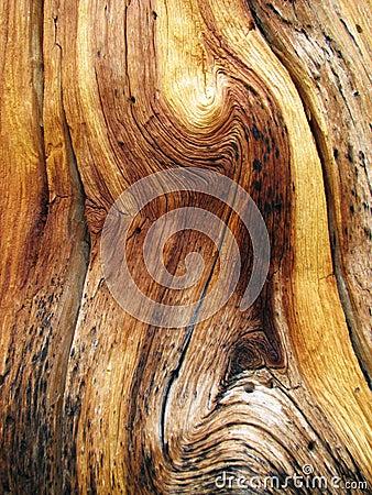 Wavy wood grain