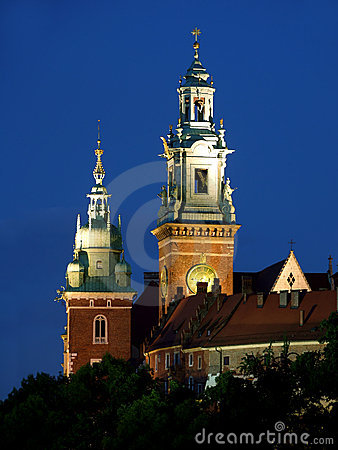 Free Wawel Castle By Night Royalty Free Stock Photography - 10238997