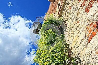 Wawel Castle, Cracow, Poland