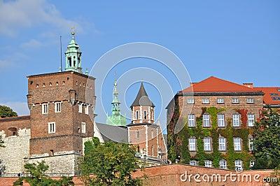 The wawel castle in krakov
