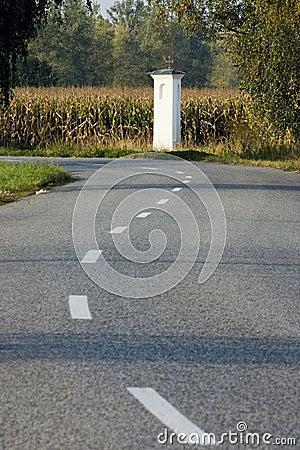 Way between field