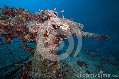 Weapons of the Thistlegorm wreck.