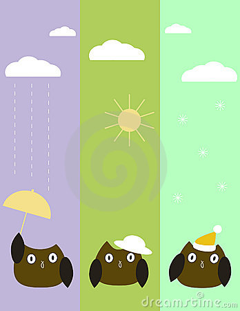 Weather owls