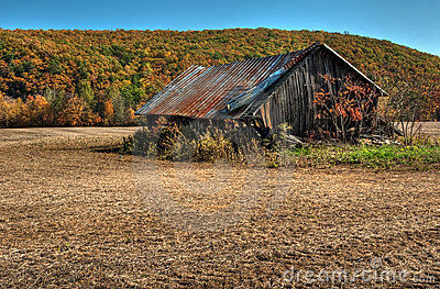 Weathered Barn Stock Photo - Image: 16805080