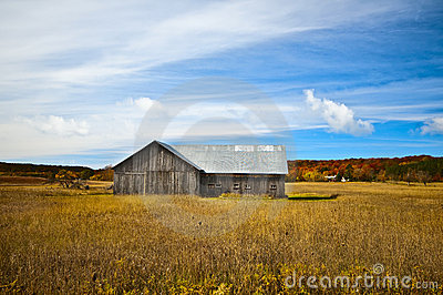 Weathered Barn, Michigan
