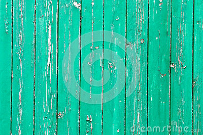 Weathered green wood