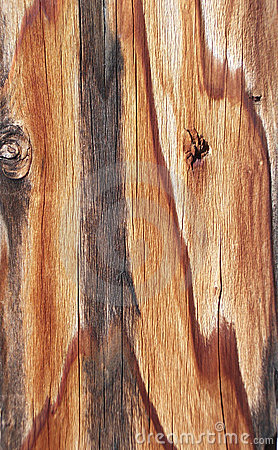 Weathered Plank