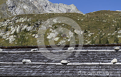 Weathered shingle roof