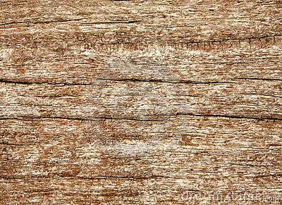 Weathered wood grain texture.