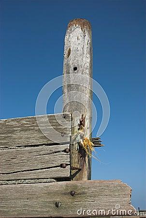 Weathered Wooden Sea Groyne