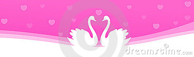 Web Header swan couple in love