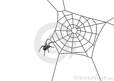 Web spider vector