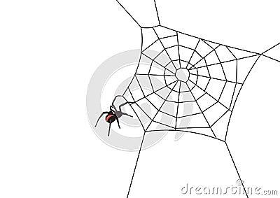 Web spider vector