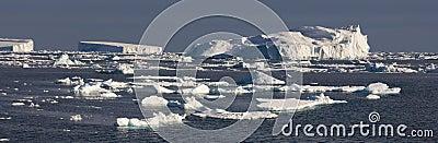 Weddell моря айсбергов Антарктики
