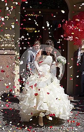 Free Wedding Stock Photos - 17640283
