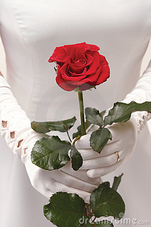 Free Wedding Royalty Free Stock Photography - 356347