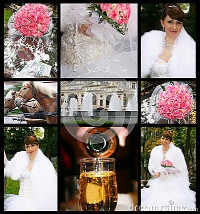 Free Wedding Stock Photography - 7656562