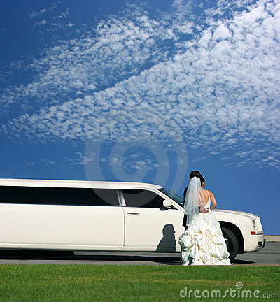 Free Wedding And Limousine Stock Image - 3490781