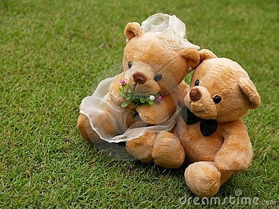 Wedding Bears on the Grass