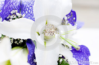 Wedding Bouquet with white and violet flowers. Rings