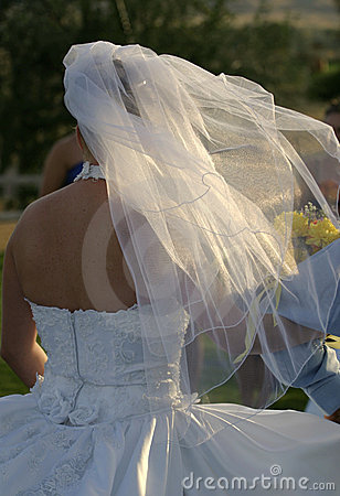 Wedding Bridal Veil 2