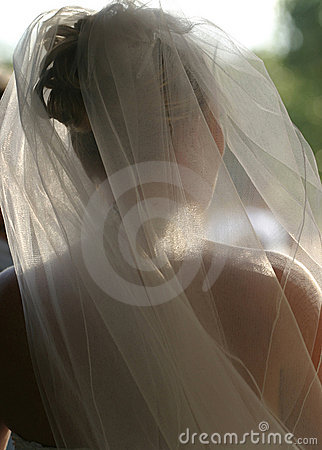 Free Wedding Bridal Veil Royalty Free Stock Images - 357279