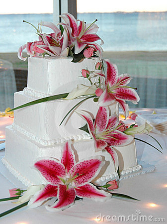 Free Wedding Cake Royalty Free Stock Image - 1026896