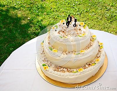 Wedding cake with roses and hazelnut