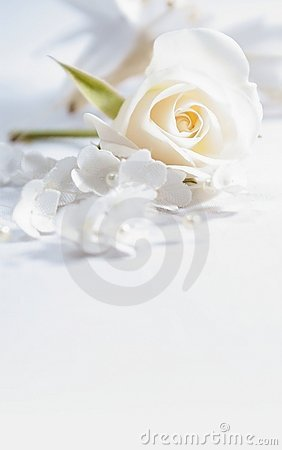 Free Wedding Card Royalty Free Stock Images - 19924329