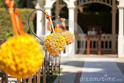 Wedding ceremony in garden