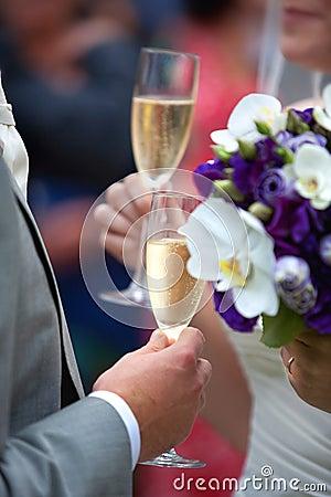 Free Wedding Champagne Toast Royalty Free Stock Photos - 10671868