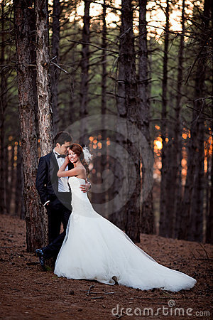 Free Wedding Couple Royalty Free Stock Images - 17267579