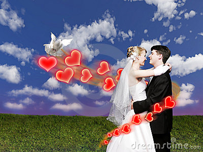 Wedding couple with dove on meadow collage