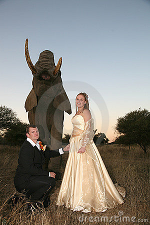 Wedding Couple with elephant : Look behind YOU!