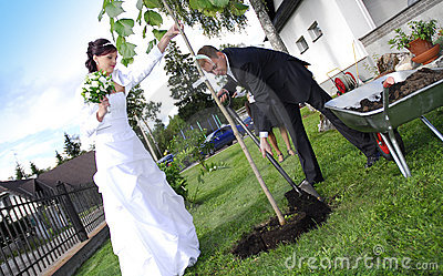 Wedding couple planting tree