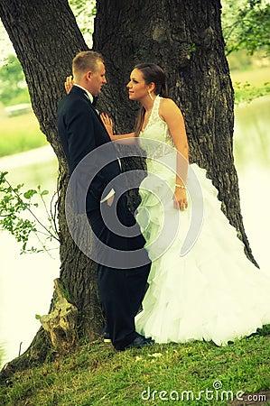 Wedding couple on tree