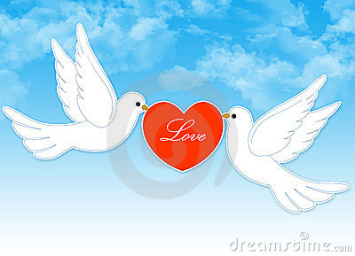 Wedding dove couple
