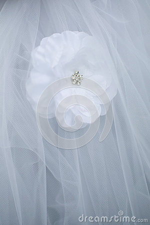 Wedding dress detail.