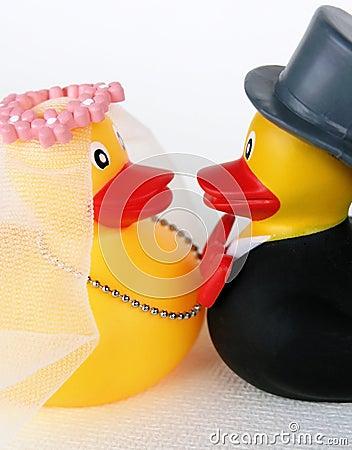 Free Wedding Ducks 1 Stock Photos - 1241893