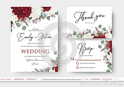 Wedding floral invite, save the date, thank you, rsvp card design with red and white garden rose flowers, seeded eucalyptus Vector Illustration