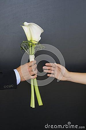 The Wedding Flower