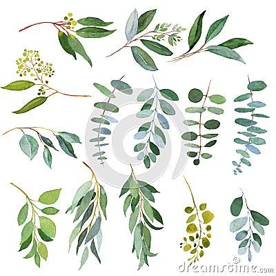Free Wedding Greenery Eucalyptus Twigs. Watercolor Illustrations Stock Photo - 110945900
