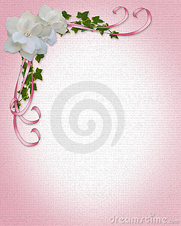 pink gardenias in a pot stock photo  image, Beautiful flower
