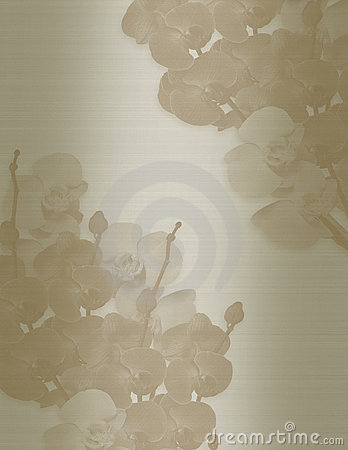 Wedding invitation Orchids sepia