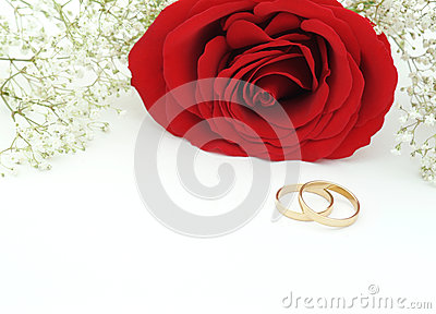 Wedding invite with rose and rings